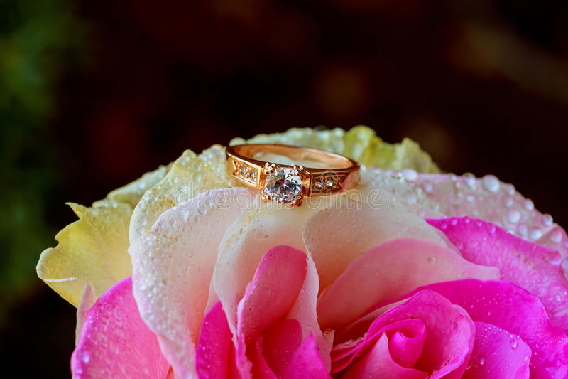 De macroclose-up nam met dauwdalingen en mooie fonkelende diamantring toe royalty-vrije stock foto's