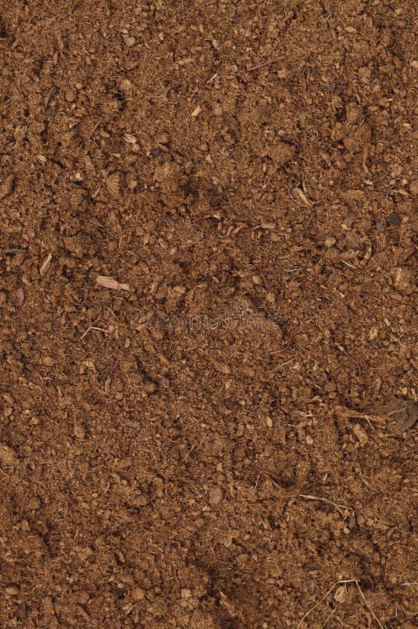 De Macroclose-up van het turfgras, grote gedetailleerde bruine organische humusgrond royalty-vrije stock fotografie