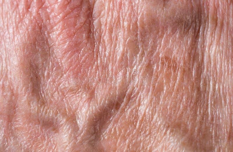 De macrofoto van rug van oud bemant hand royalty-vrije stock afbeelding