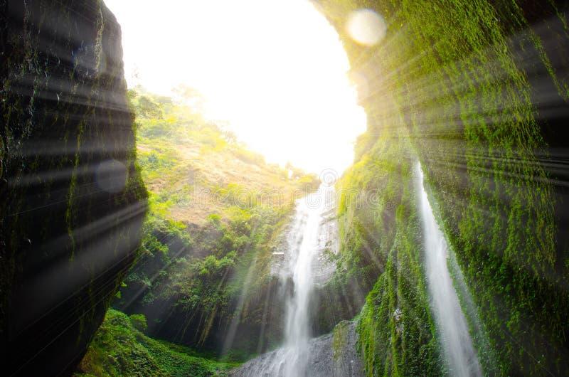 De Madakaripurawaterval met zonlichteffect is de langste waterval in diep bos in Java a, Indonesië stock foto