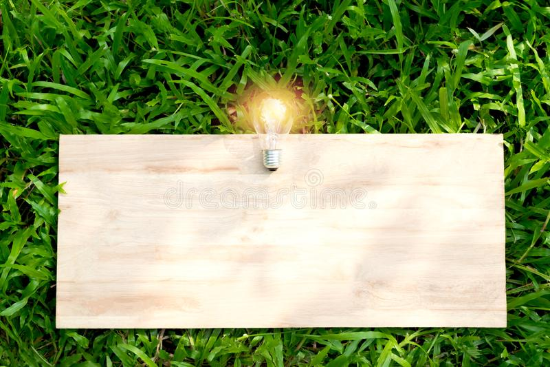 De madeira na grama verde com a ampola sobre para o texto ou o adverti foto de stock