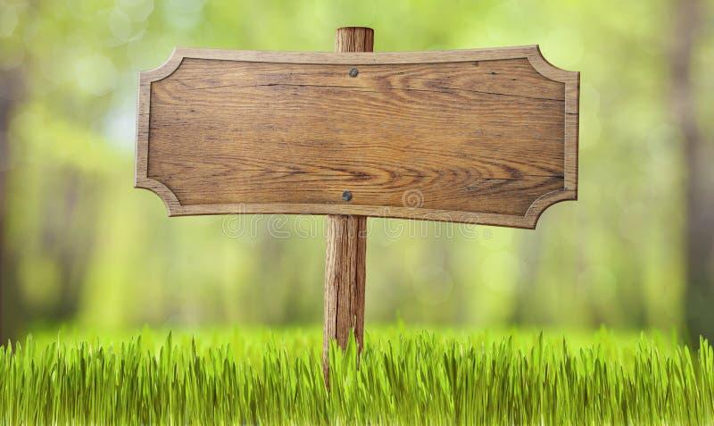 De madera firme adentro la hierba del bosque del verano fotografía de archivo libre de regalías