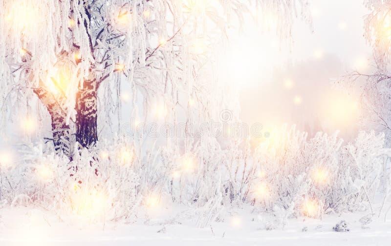 De magische achtergrond van de Kerstmiswinter Glanzende Sneeuwvlokken en de winteraard met rijp op bomen De ijzige winter royalty-vrije stock afbeeldingen