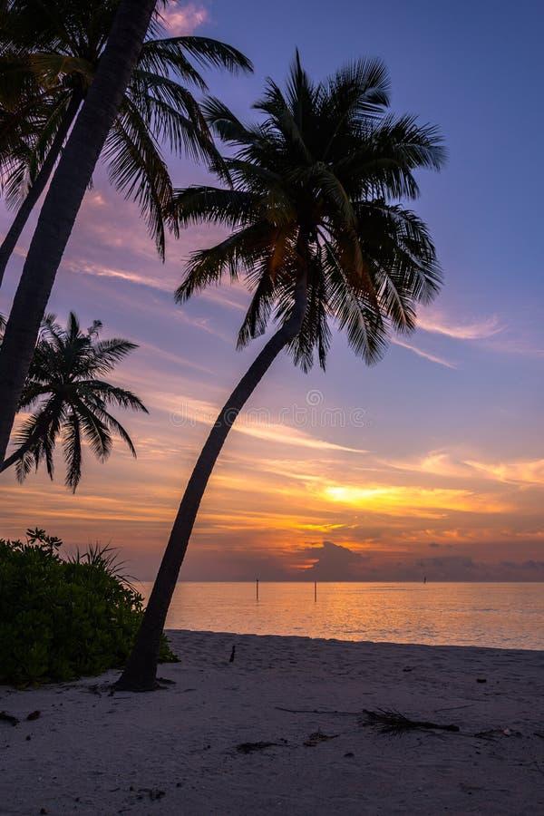 De Magische Zonsondergang in het Eiland van de Maldiven royalty-vrije stock afbeeldingen