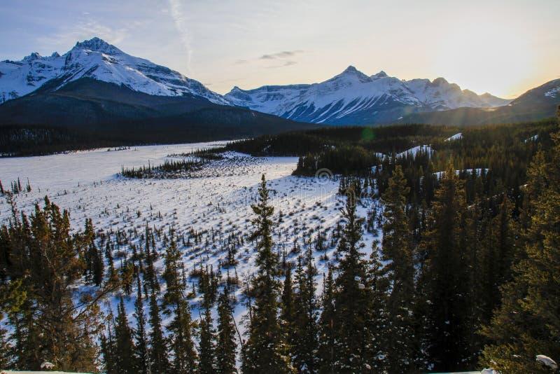 De majestuous Rotsachtige Bergen op een roadtrip tussen Jaspis en Alberta op Alberta Highway 93, Alberta, Canada stock afbeelding
