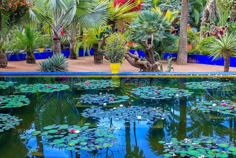 De Majorelle-Tuin is een botanische tuin en het landschapstuin van de kunstenaar in Marrakech royalty-vrije stock fotografie