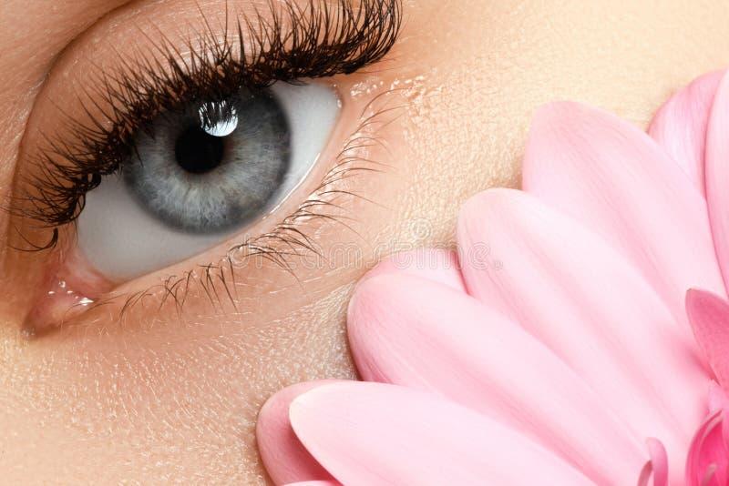 De Make-up van de schoonheid Mooi vrouwenoog met verse bloem, kuuroord stock foto