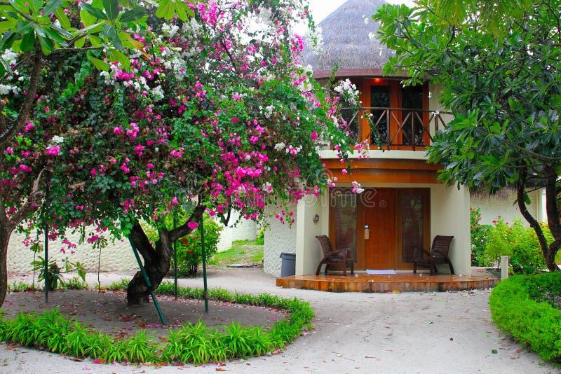 De Maldiven, Augustus 2012 Kleurrijke mening aan een exotisch twee-verhaal om bungalow onder bloesembomen en palmen royalty-vrije stock foto