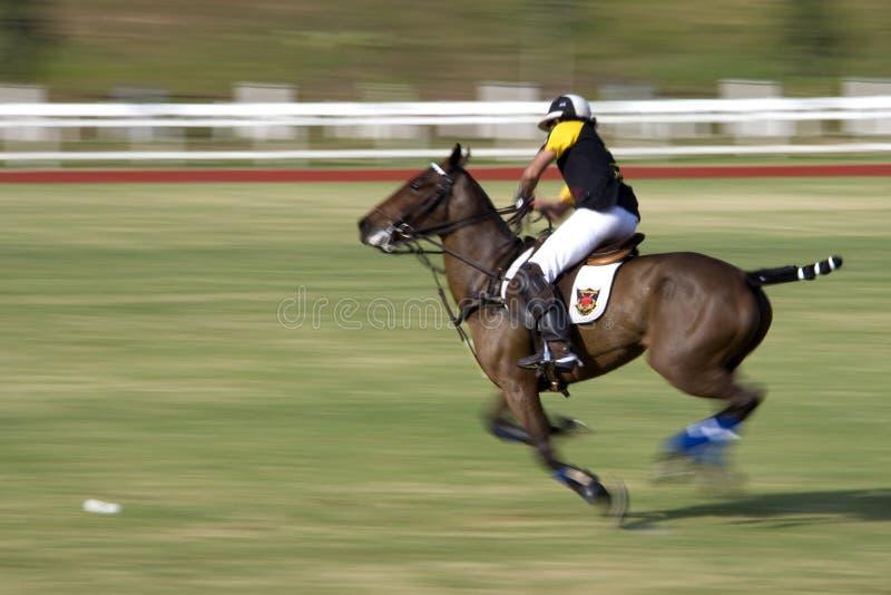 De Maleise Open (Vage) Actie van het Polo royalty-vrije stock foto's