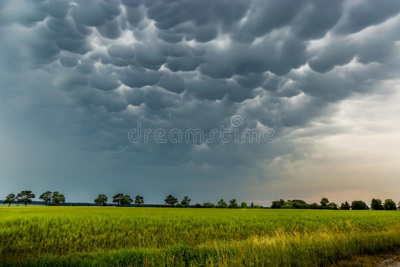 De Mammatuswolken vullen de hemel stock afbeelding