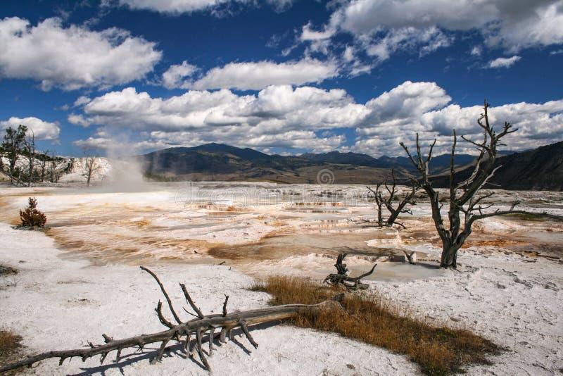 De mammoet hete lente, het Nationale Park van Yellowstone, Wyoming royalty-vrije stock foto