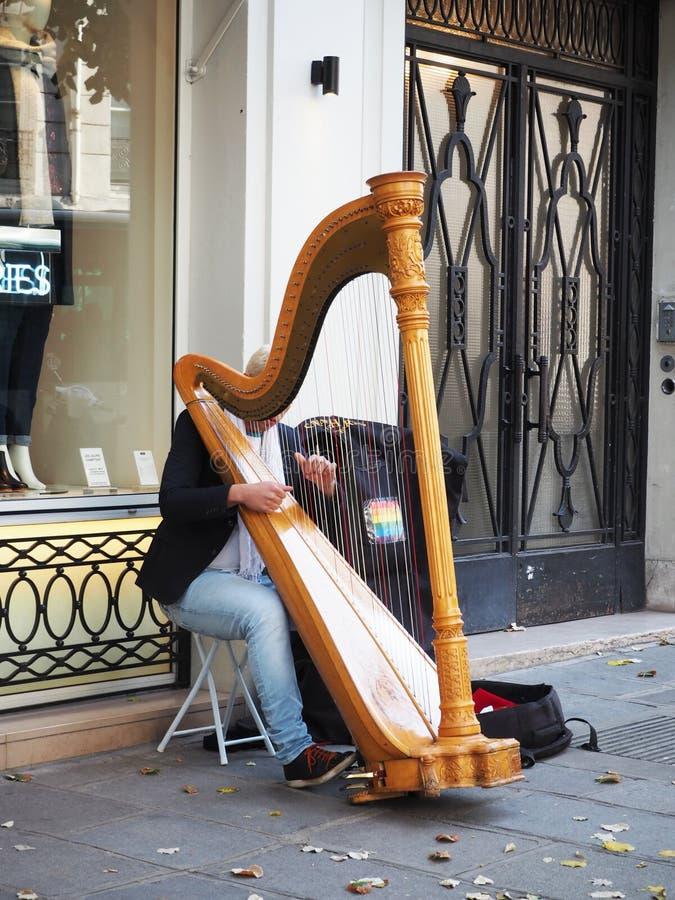 De man speelde Harp bij straat in Parijs royalty-vrije stock foto's