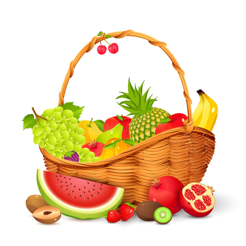 De Mand van het fruit stock illustratie