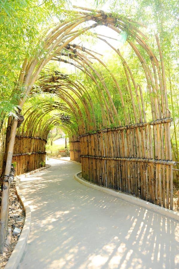De manier van het bamboe royalty-vrije stock foto's