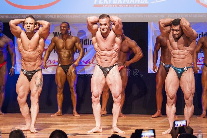 De mannelijke bodybuilders buigen hun spieren om hun lichaamsbouw te tonen royalty-vrije stock foto's
