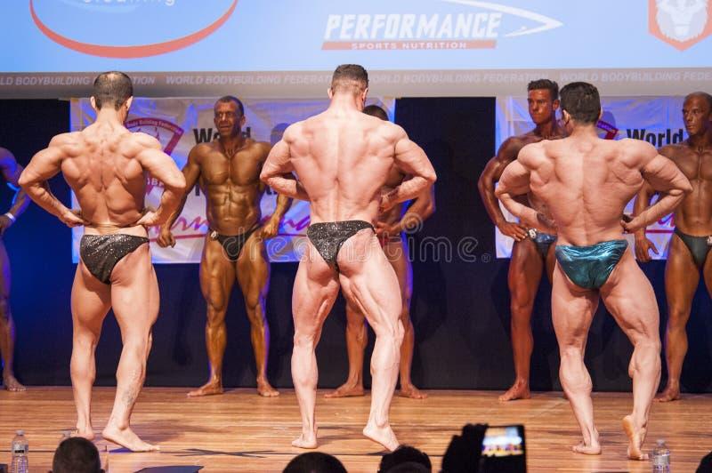 De mannelijke bodybuilders buigen hun spieren om hun lichaamsbouw te tonen royalty-vrije stock afbeeldingen