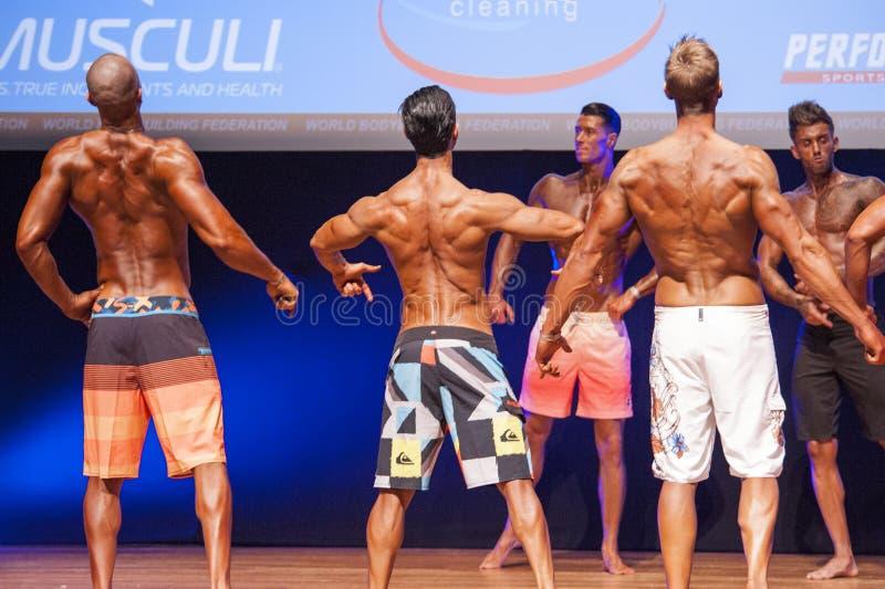 De mannelijke geschiktheidsmodellen tonen hun lichaamsbouw in zwempakom stadium royalty-vrije stock afbeeldingen