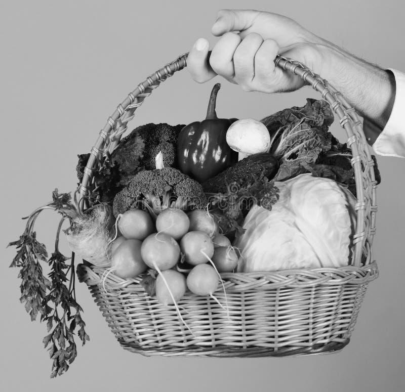 De mannelijke hand houdt veggies op rode achtergrond De landbouwer houdt kool, radijs, peper, broccoli, wortel, paddestoel en sla royalty-vrije stock foto