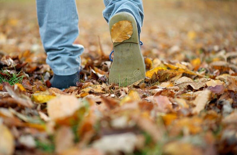 De mannelijke schoenen die op daling lopen gaat in openlucht weg royalty-vrije stock afbeelding