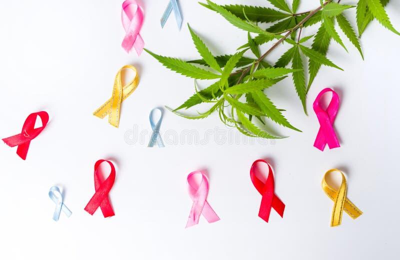 De marihuana doorbladert met de symbolen van de Kankervoorlichting royalty-vrije stock afbeeldingen