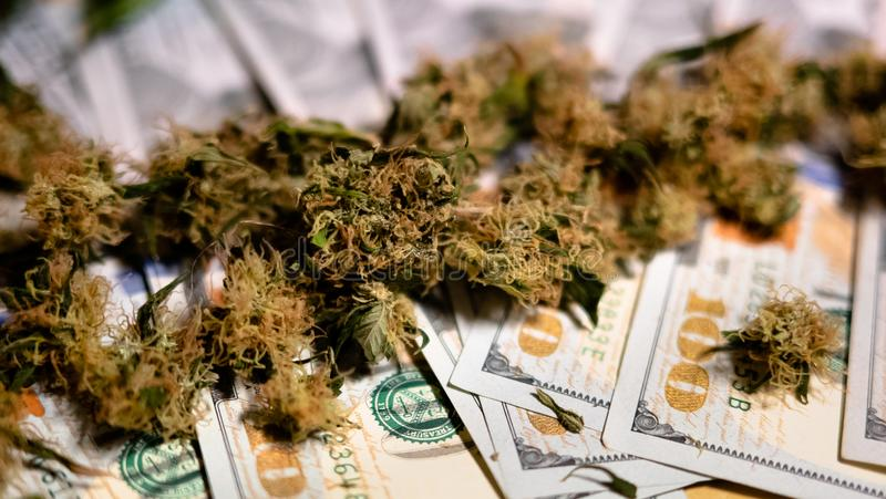 De marihuanaknoppen liggen op geld stock afbeeldingen