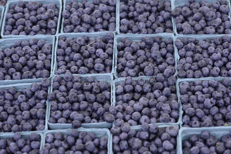 De Markt van de landbouwer stock afbeelding