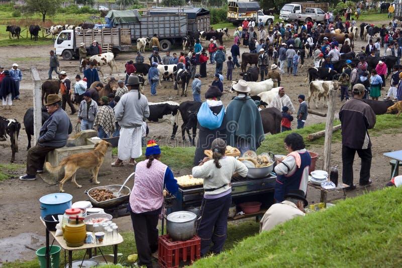 De Markt van het Vee Ecuador - Otavalo stock afbeeldingen
