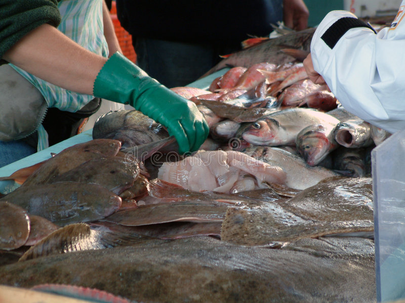 Download De Markt van vissen stock afbeelding. Afbeelding bestaande uit voedsel - 44765