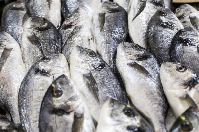 De markt van vissen in Hongkong stock afbeeldingen