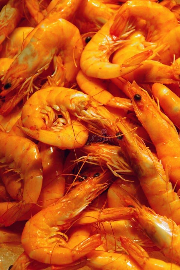 De Markt van zeevruchten royalty-vrije stock afbeeldingen