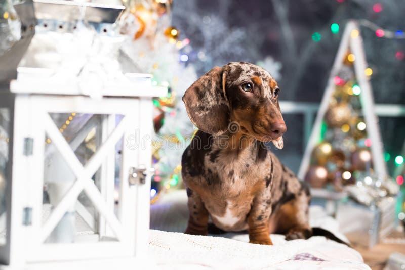 De marmeren kleur van de Kerstmistekkel royalty-vrije stock afbeelding