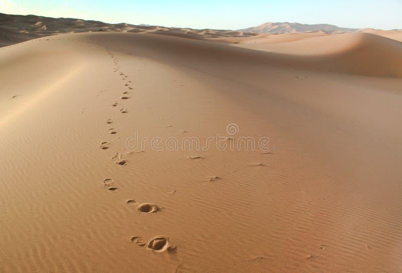 De Marokkaanse achtergrond van het woestijnduin stock afbeelding
