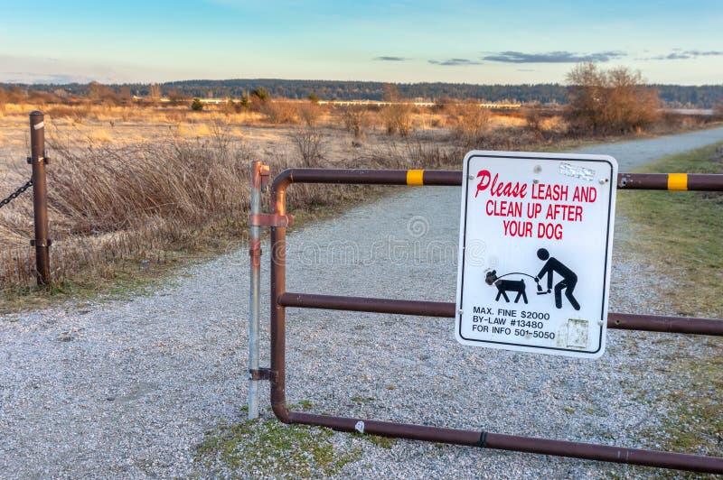 18 de marzo de 2019 - Surrey, A.C.: Dueños de cuidado del perro de la muestra para coger la basura del animal doméstico fotografía de archivo