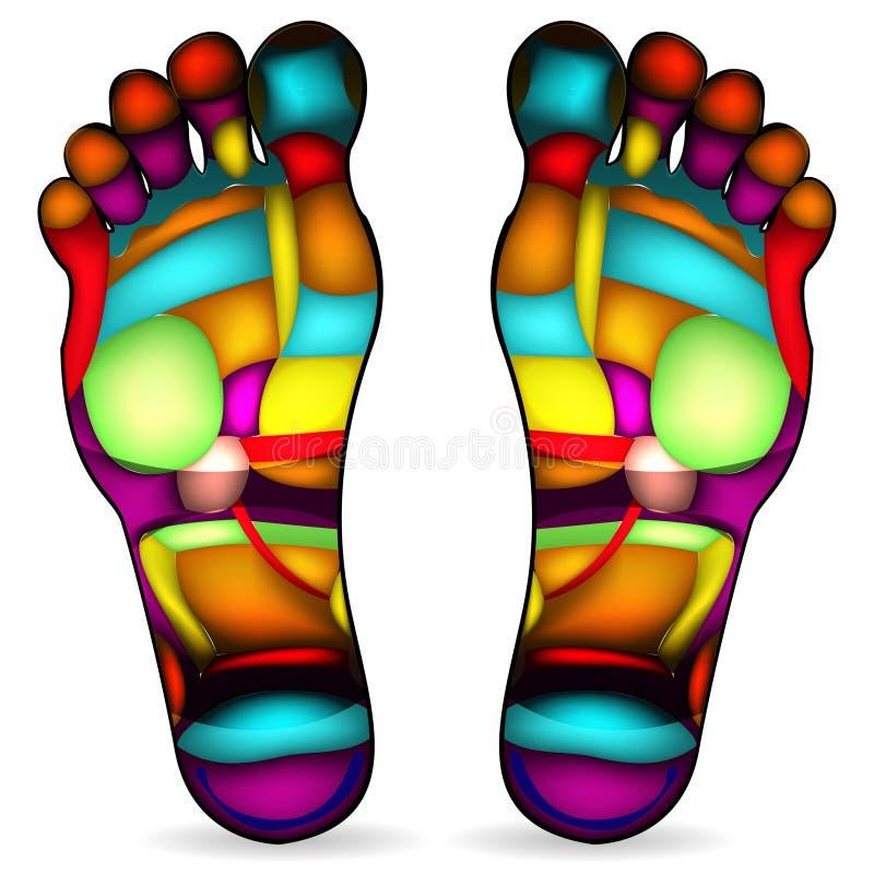 De massagegrafiek van de voet vector illustratie