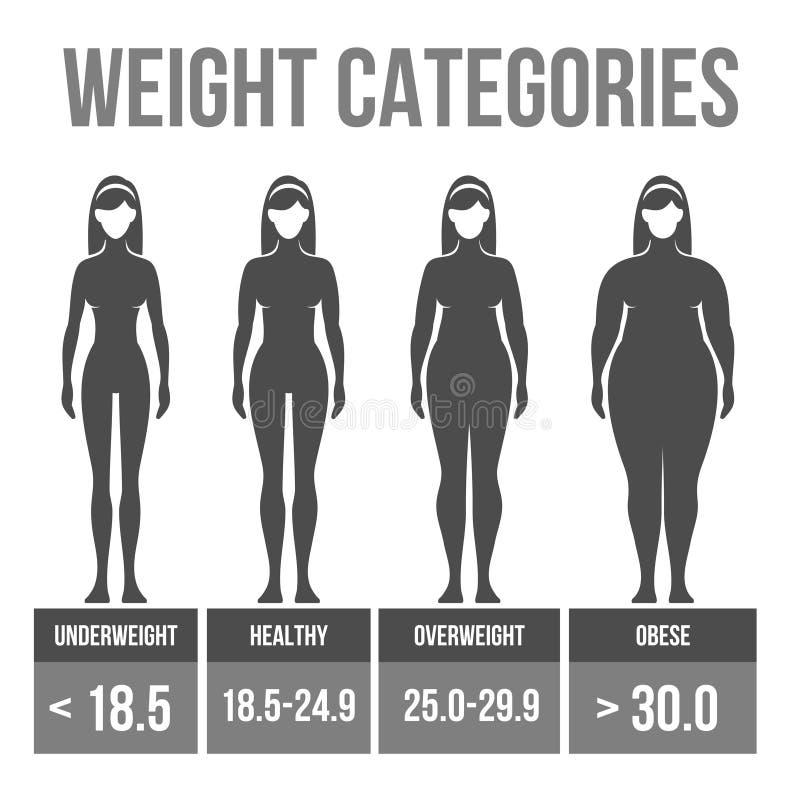 De massaindex van het vrouwenlichaam. royalty-vrije illustratie