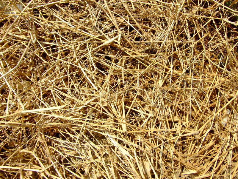 De matrijs van het grashooi van achtergrond stock afbeeldingen