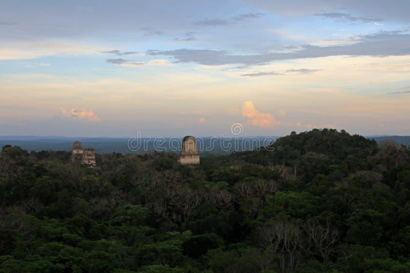 De mayan ruïnes Tikal Guatemala stock fotografie