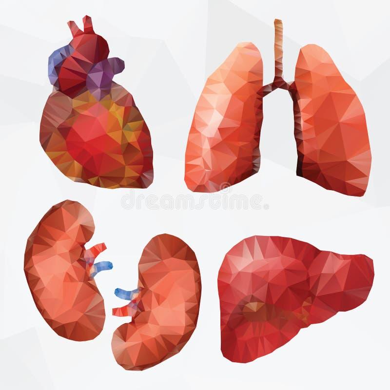 De medische Reeks van het Pictogram vector illustratie