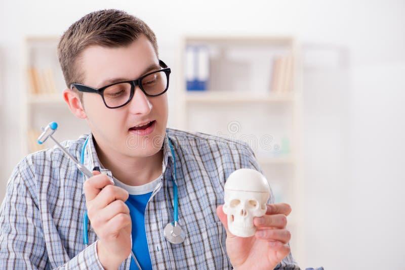 De medische student die skelet in klaslokaal bestuderen tijdens lezing stock afbeeldingen