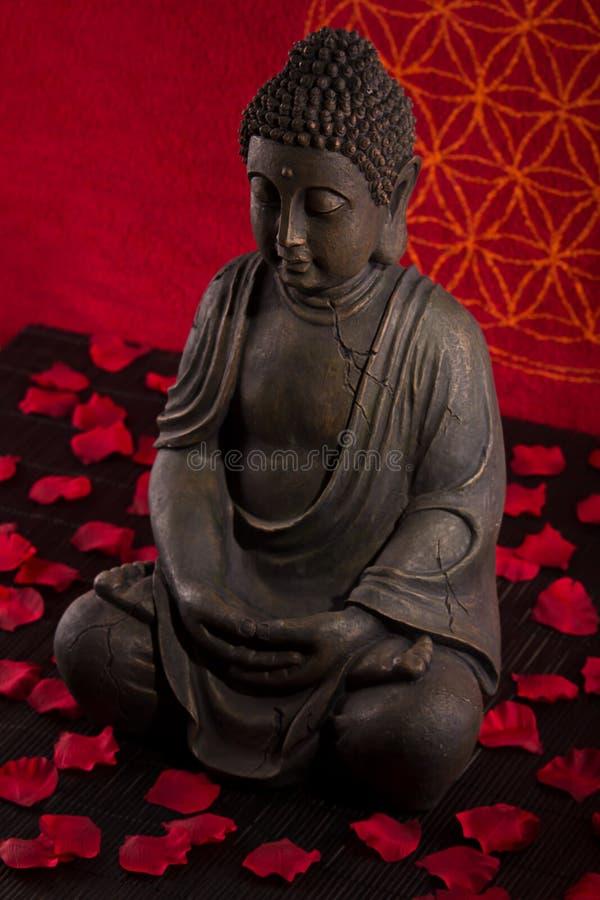 De meditatie van Boedha royalty-vrije stock foto's