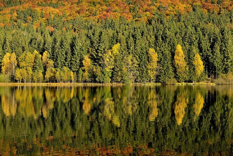 De Meerbezinningen van dalingsgebladerte Het kleurrijke de herfstgebladerte giet zijn gedachtengang over het kalme water stock afbeeldingen