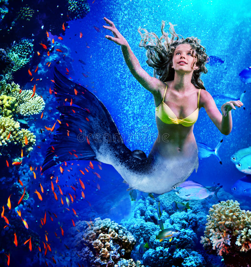 De meermin duikt onderwater door koraal royalty-vrije stock foto