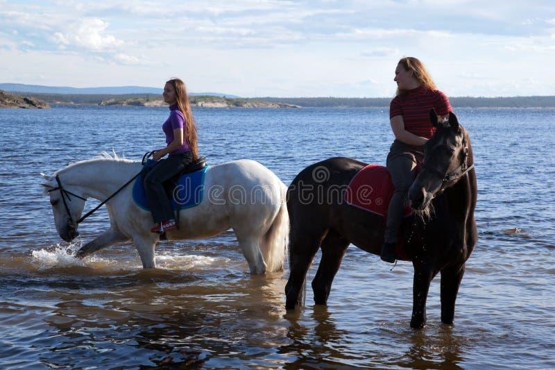 De meisjes leidden de paarden tot water royalty-vrije stock foto