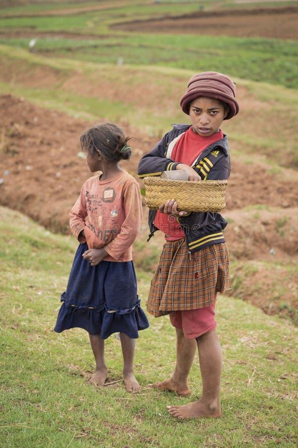 De meisjes van Madagascar op een gebiedslandschap royalty-vrije stock afbeelding