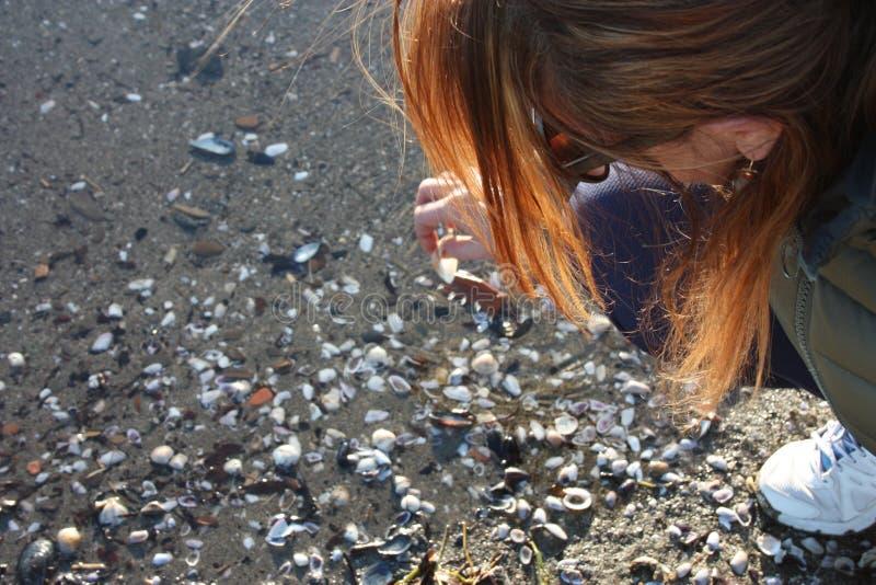 De meisjesneiging over het strand verzamelt shells in het zand royalty-vrije stock foto
