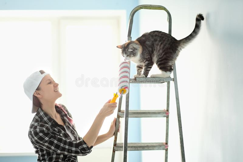 De de de meisjesschilder, ontwerper en arbeider schilderen een rol en borstelen de muur De kat zit naast de ladder en bekijkt royalty-vrije stock foto's
