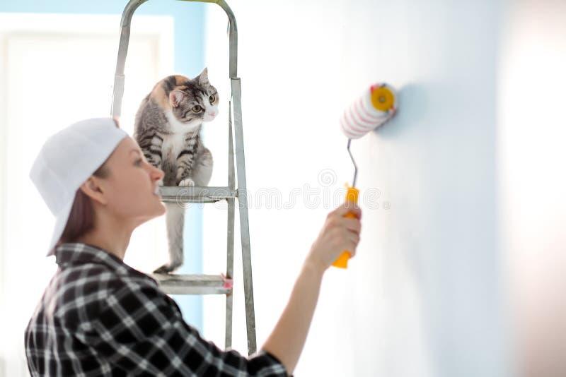 De de de meisjesschilder, ontwerper en arbeider schilderen een rol en borstelen de muur De kat zit naast de ladder en bekijkt stock afbeelding