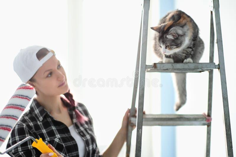 De de de meisjesschilder, ontwerper en arbeider schilderen een rol en borstelen de muur De kat zit naast de ladder en bekijkt stock afbeeldingen