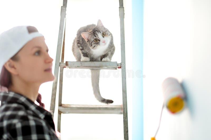 De de de meisjesschilder, ontwerper en arbeider schilderen een rol en borstelen de muur De kat zit naast de ladder en bekijkt royalty-vrije stock foto