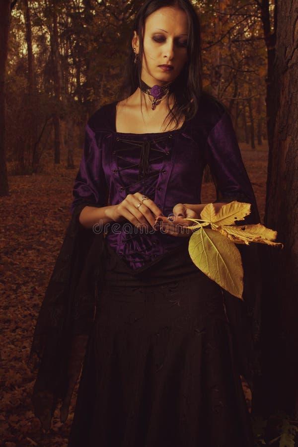 De melancholie van de herfst stock afbeelding